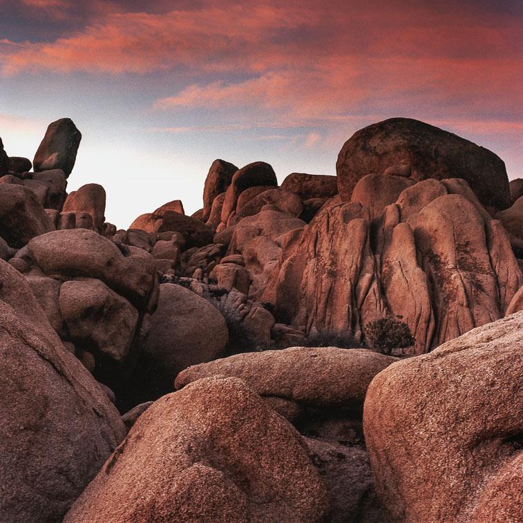 Rocks, Joshua Tree Nat. Forest