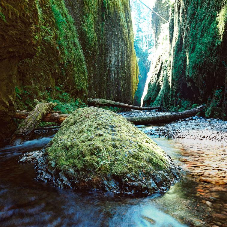 Oneata Gorge