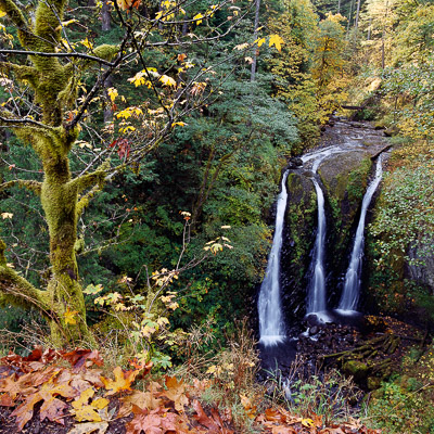 triple-falls-columbia-river-gorge-or-8x8.jpg