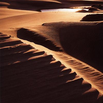 umpqua-dunes-sunset-2-or-coast-8x8.jpg
