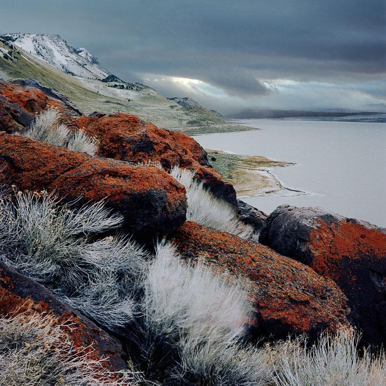 Red Lichen, Abert Lake