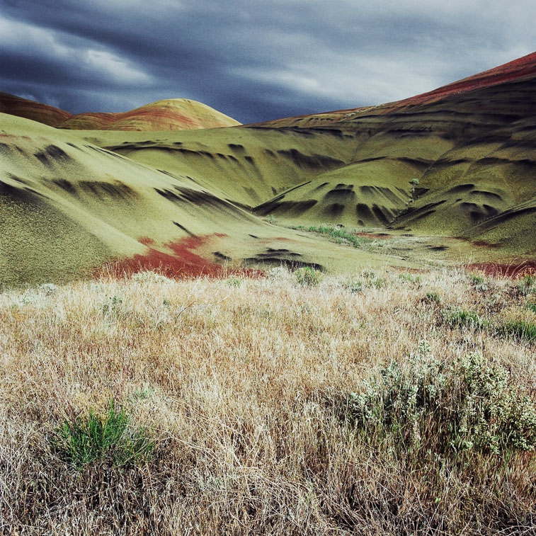 Painted Hills and Grass