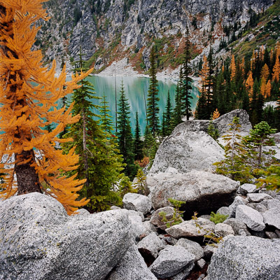 colchuck-lake-and-larch-tree-in-the-enchantments-near-levenworh-wa-8x8.jpg