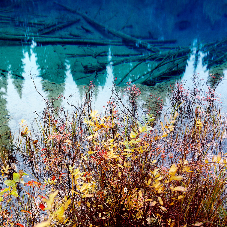 Little Crater Lake, Mt. Hood