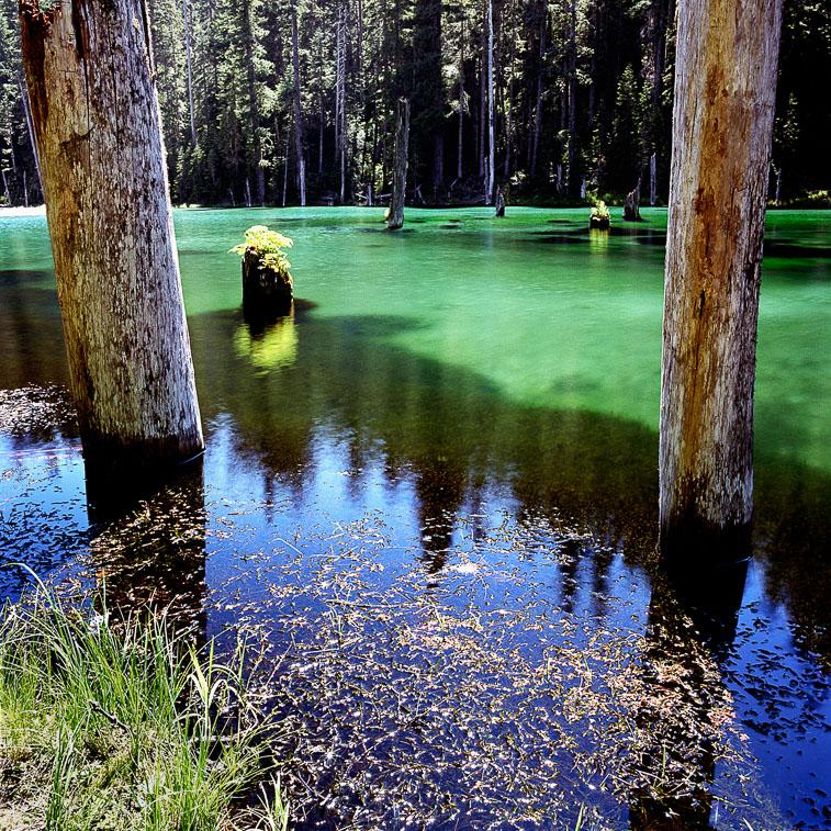 June Lake, Mt. St. Helens