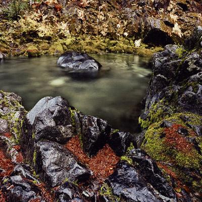 opal-creek-and-pine-needles-near-detroit-lake-or-8x8.jpg