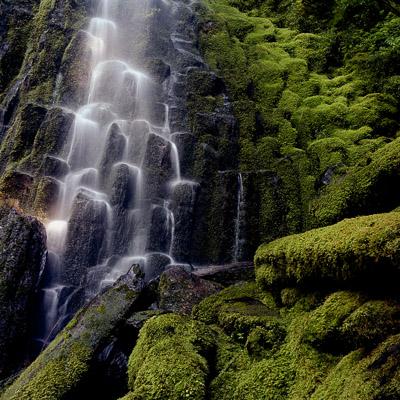 proxy-falls-near-the-mckenzie-river-or-8x8.jpg