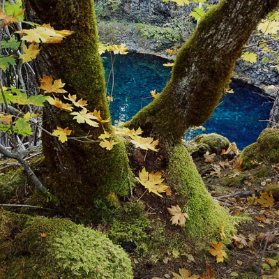 the-blue-pool-2-along-the-mckenzie-river-or-8x8.jpg